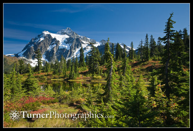 Mt. Shuksan from Picture Lake
